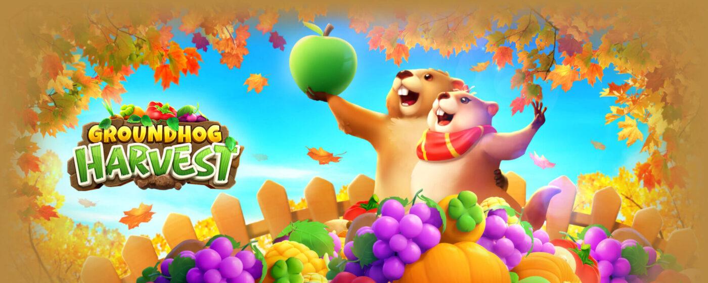 รีวิวเกม Groundhog Harvest